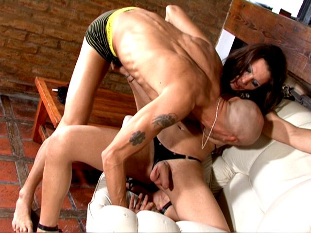 Super-naughty Brown-haired Ladyboy Honey Triany Will Get Rod Jacked And Bj'ed By Means Of A Shaved Fellow
